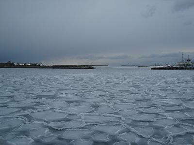 根室港結氷